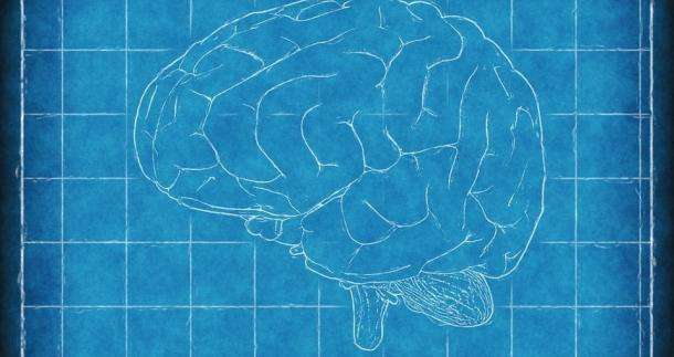 How Does Long-term Alcohol Abuse Affect the Brain?