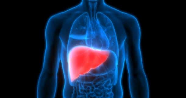 Foods That Are Good for the Liver